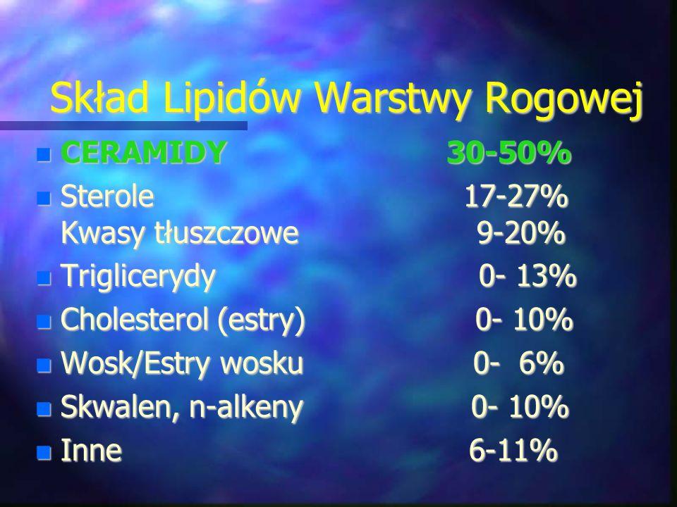 Skład Lipidów Warstwy Rogowej