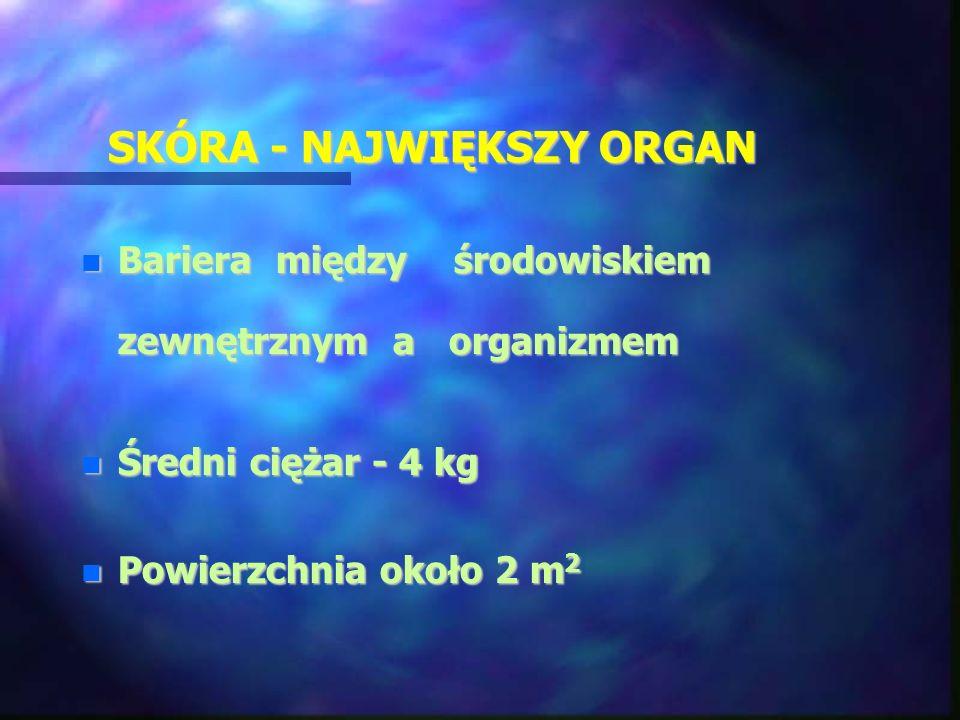 SKÓRA - NAJWIĘKSZY ORGAN