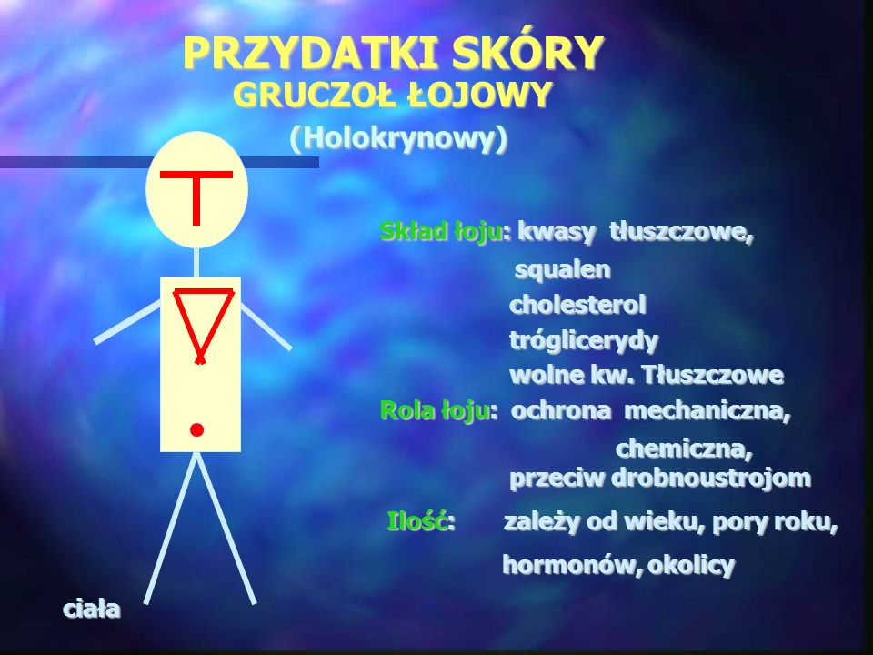 PRZYDATKI SKÓRY GRUCZOŁ ŁOJOWY (Holokrynowy)