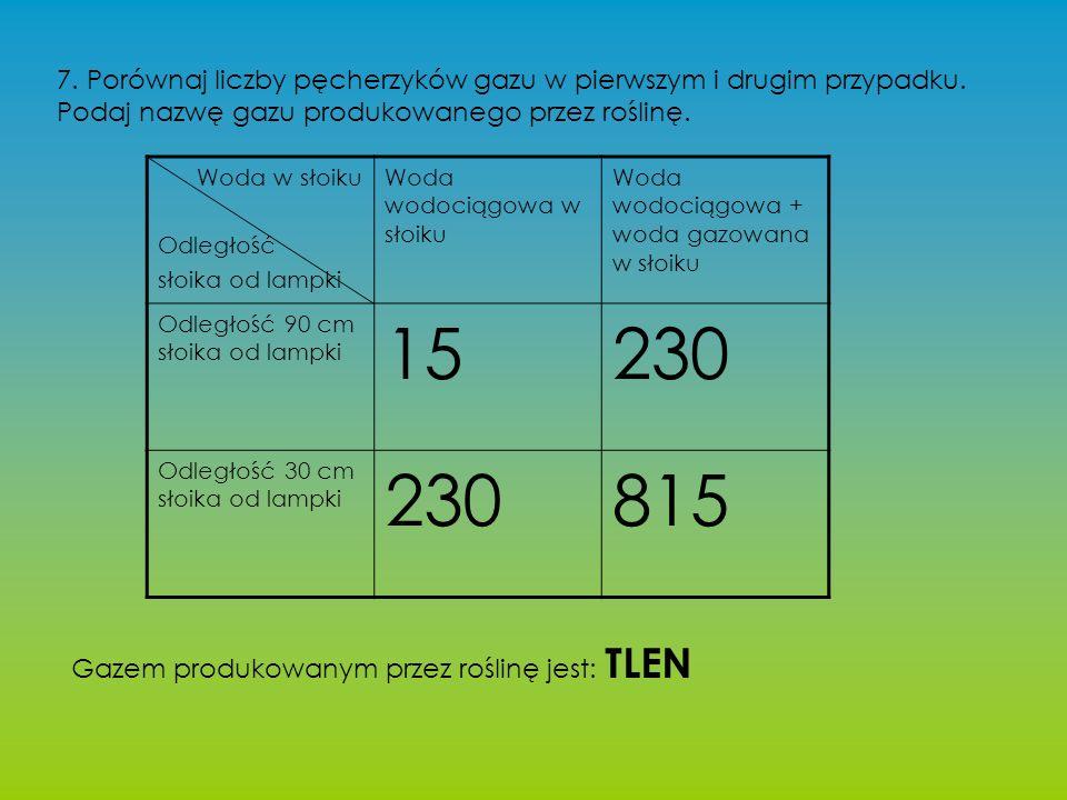 7. Porównaj liczby pęcherzyków gazu w pierwszym i drugim przypadku.