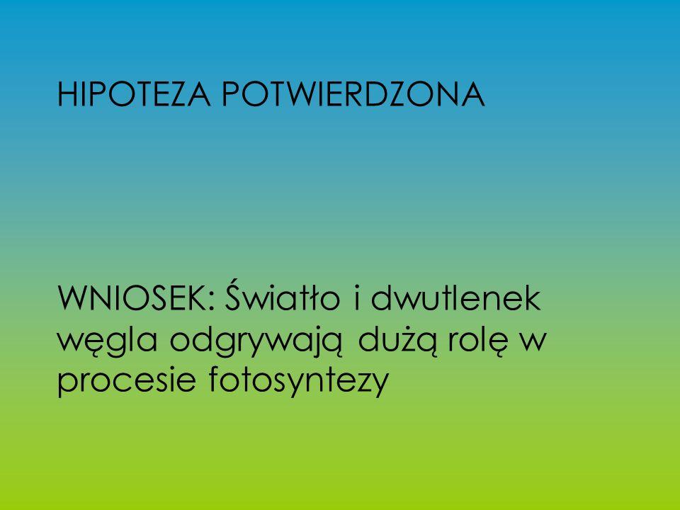 HIPOTEZA POTWIERDZONA
