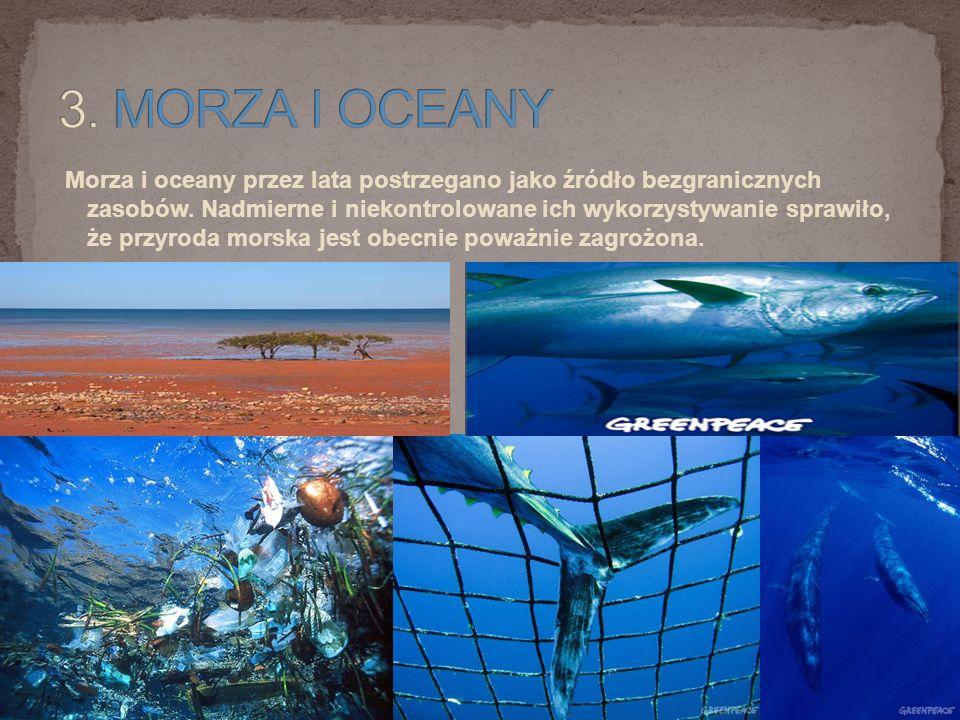 3. MORZA I OCEANY