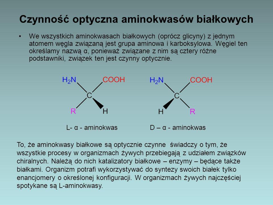 Czynność optyczna aminokwasów białkowych