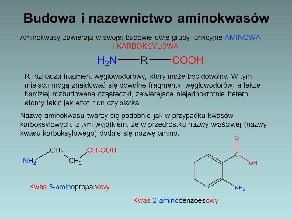 Budowa i nazewnictwo aminokwasów