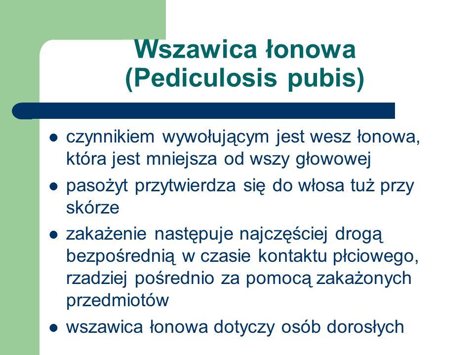 Wszawica łonowa (Pediculosis pubis)