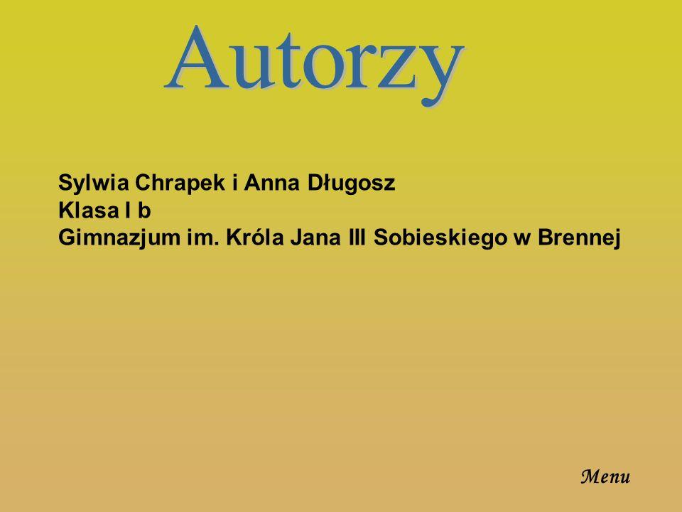 Autorzy Sylwia Chrapek i Anna Długosz Klasa I b