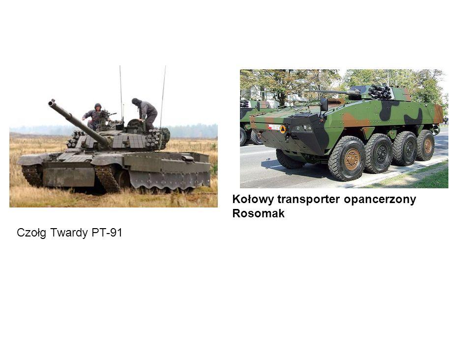 Kołowy transporter opancerzony Rosomak