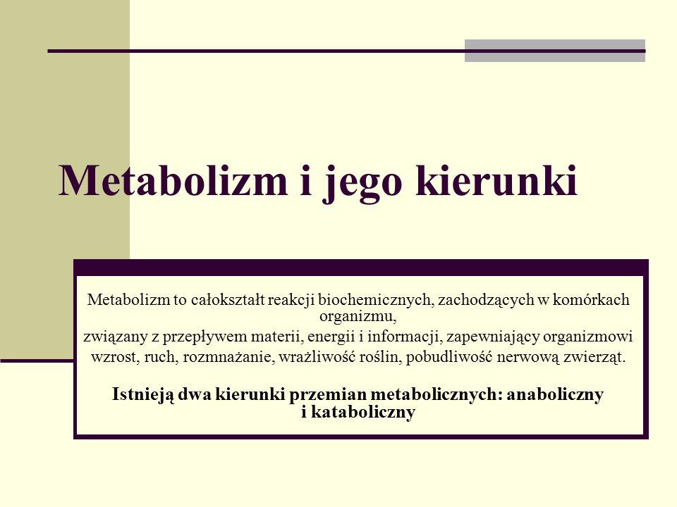 Metabolizm i jego kierunki