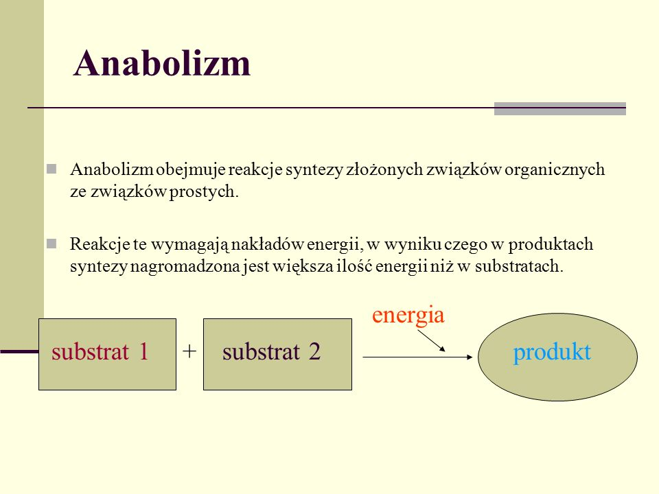 Anabolizm energia substrat 1 + substrat 2 produkt