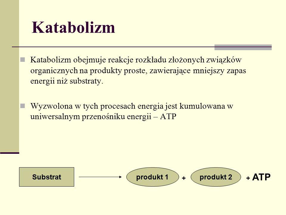 Katabolizm Katabolizm obejmuje reakcje rozkładu złożonych związków organicznych na produkty proste, zawierające mniejszy zapas energii niż substraty.