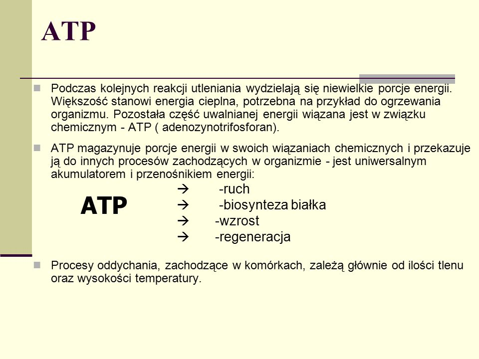 ATP ATP  -ruch  -biosynteza białka  -wzrost  -regeneracja