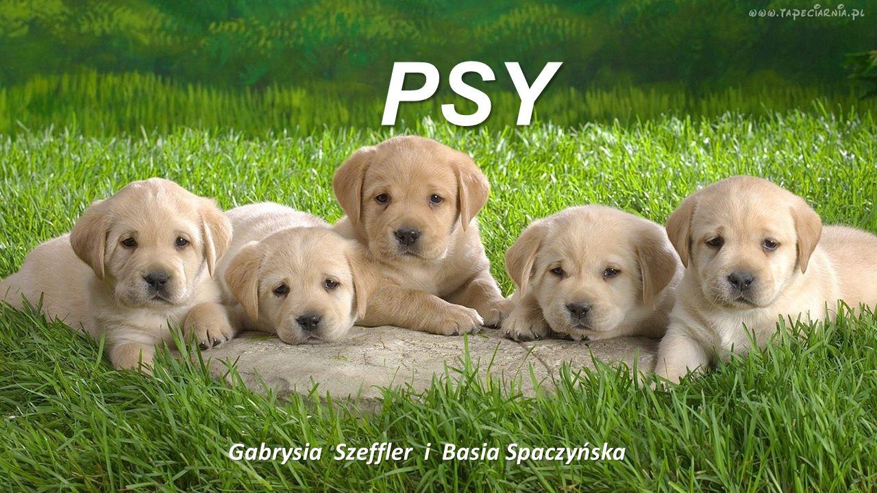 Gabrysia Szeffler i Basia Spaczyńska