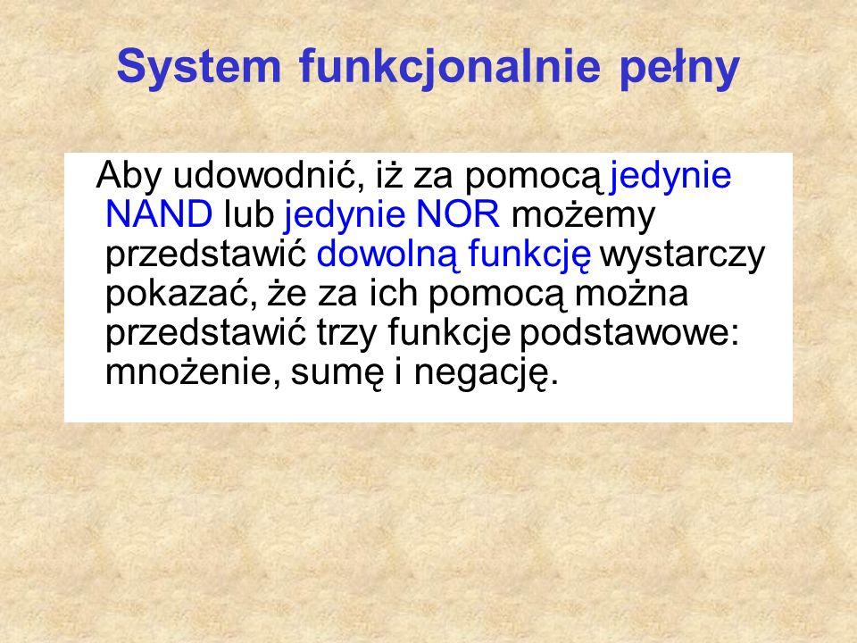 System funkcjonalnie pełny