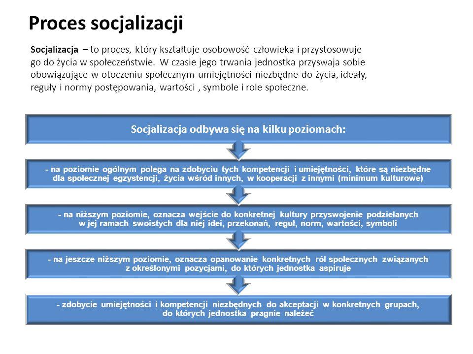 Socjalizacja odbywa się na kilku poziomach: