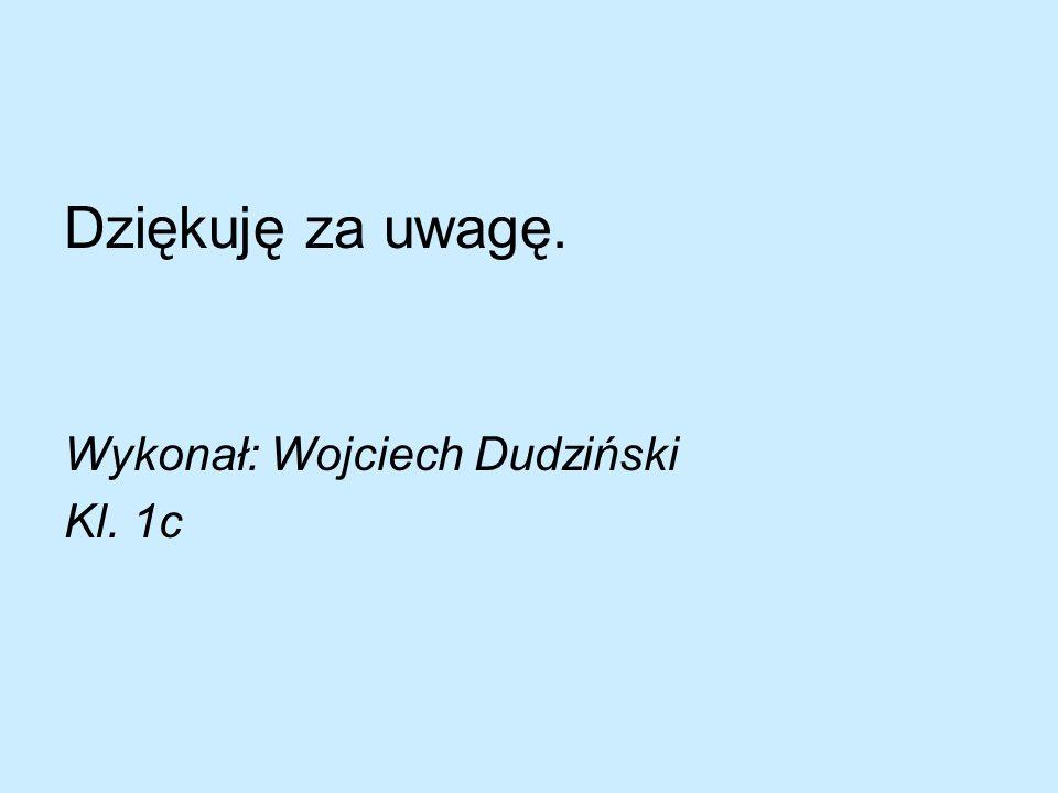 Dziękuję za uwagę. Wykonał: Wojciech Dudziński Kl. 1c
