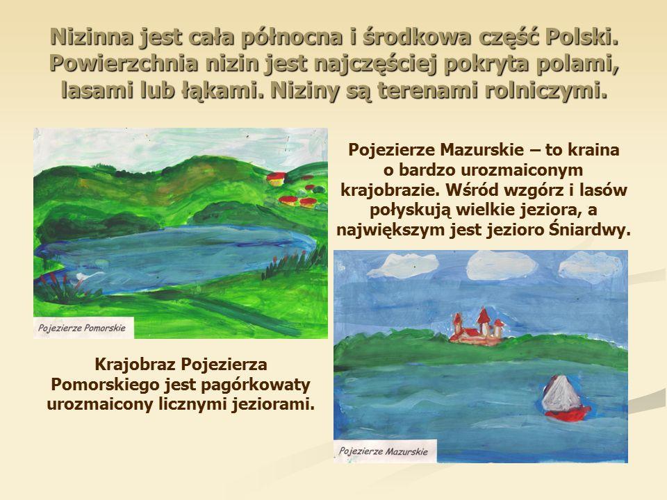 Nizinna jest cała północna i środkowa część Polski