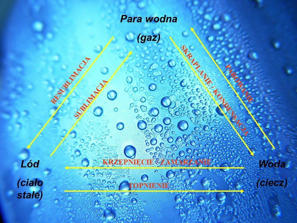 Para wodna (gaz) Lód (ciało stałe) Woda (ciecz)