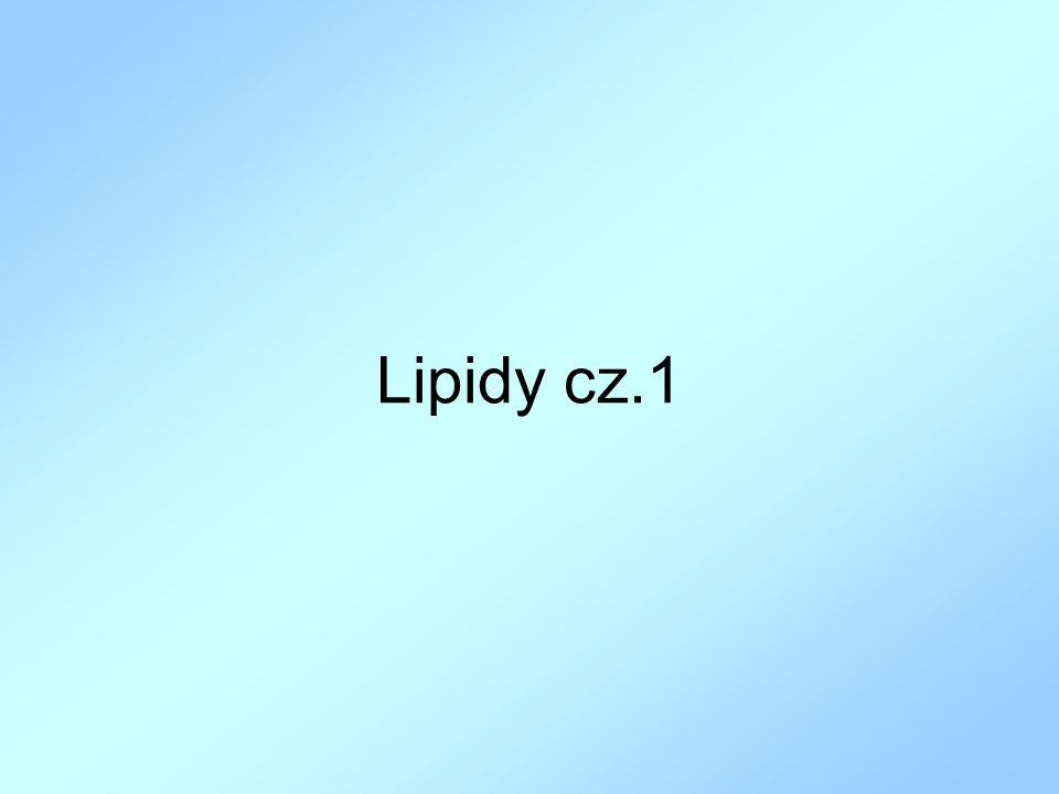 Lipidy cz.1