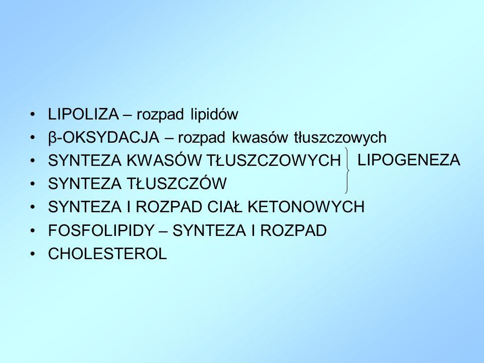 LIPOLIZA – rozpad lipidów