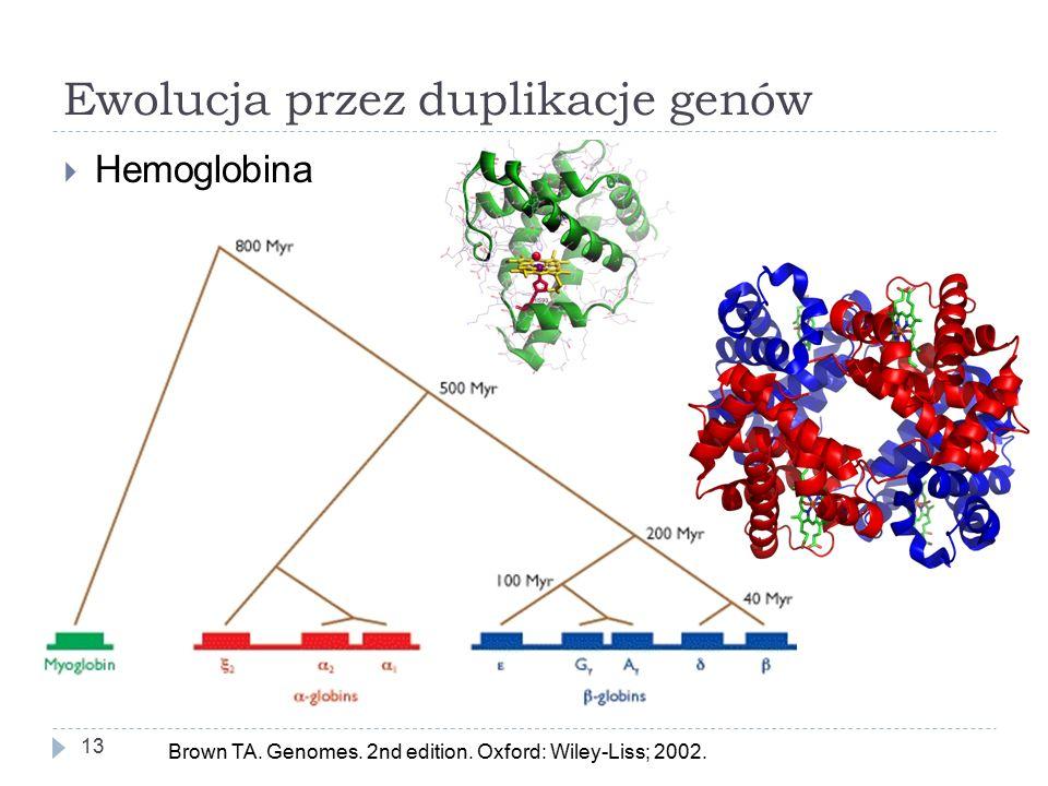 Ewolucja przez duplikacje genów