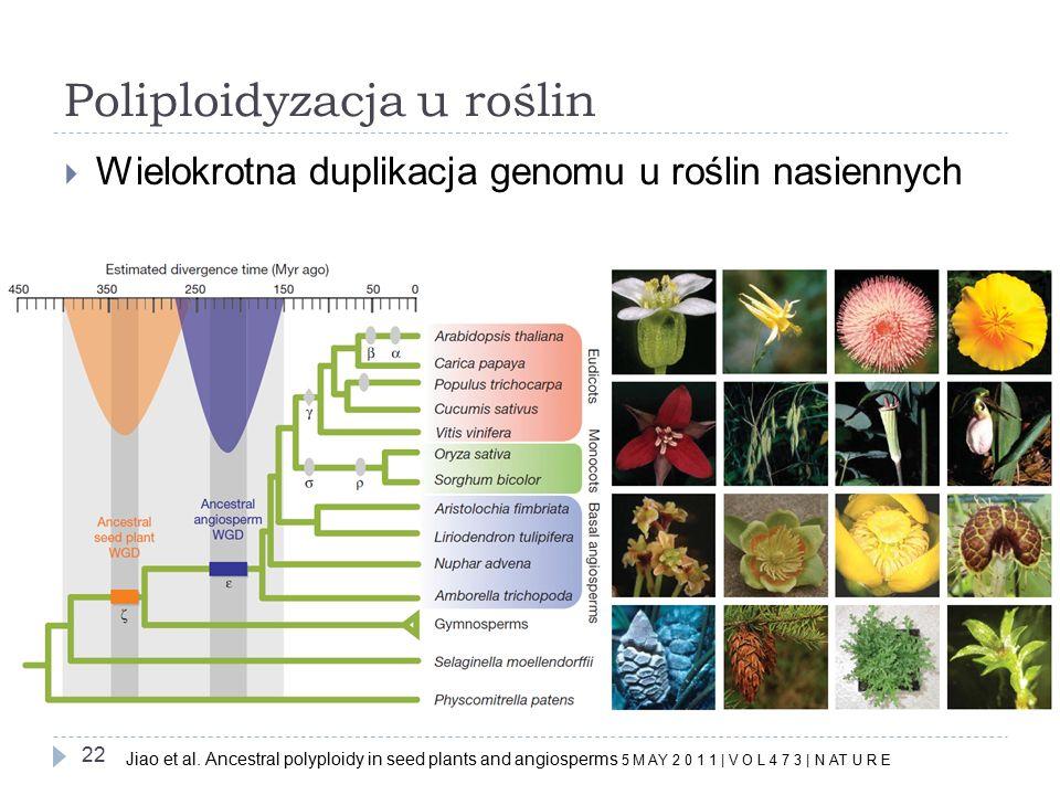 Poliploidyzacja u roślin
