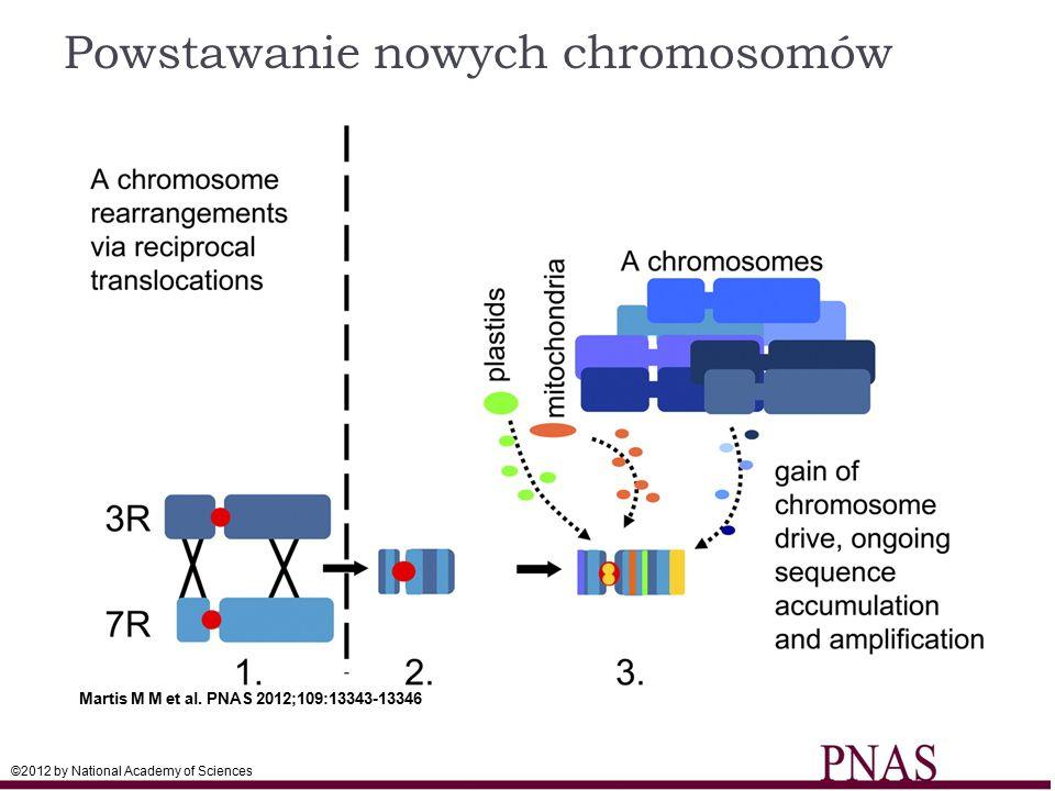 Powstawanie nowych chromosomów
