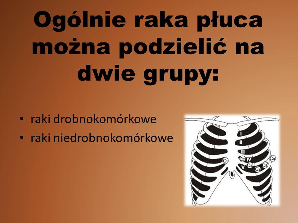 Ogólnie raka płuca można podzielić na dwie grupy: