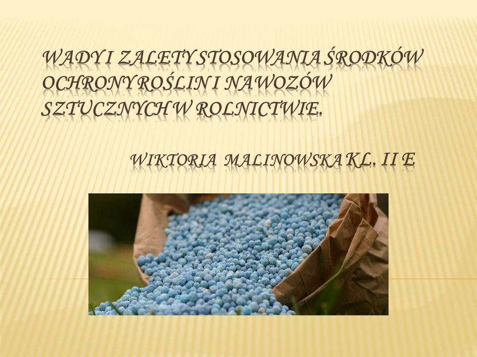 Wady i zalety stosowania środków ochrony roślin i nawozów sztucznych w rolnictwie.