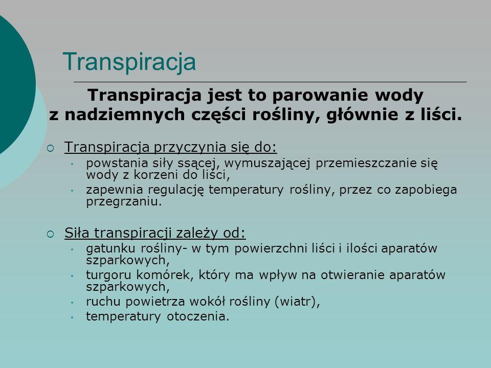 Transpiracja Transpiracja jest to parowanie wody
