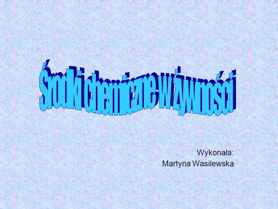 Wykonała: Martyna Wasilewska