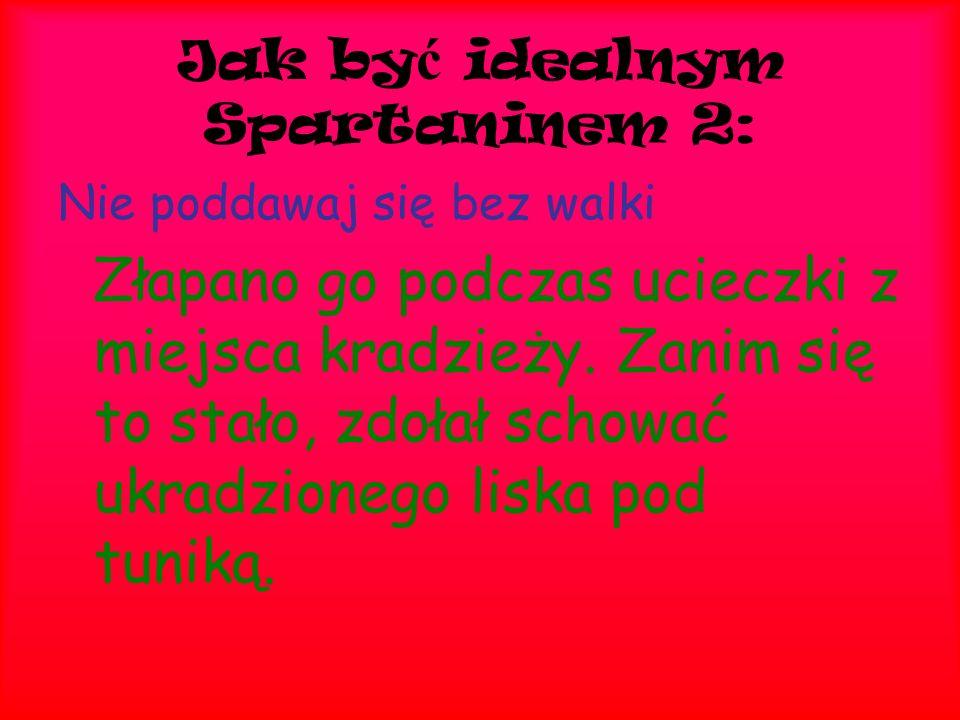 Jak być idealnym Spartaninem 2: