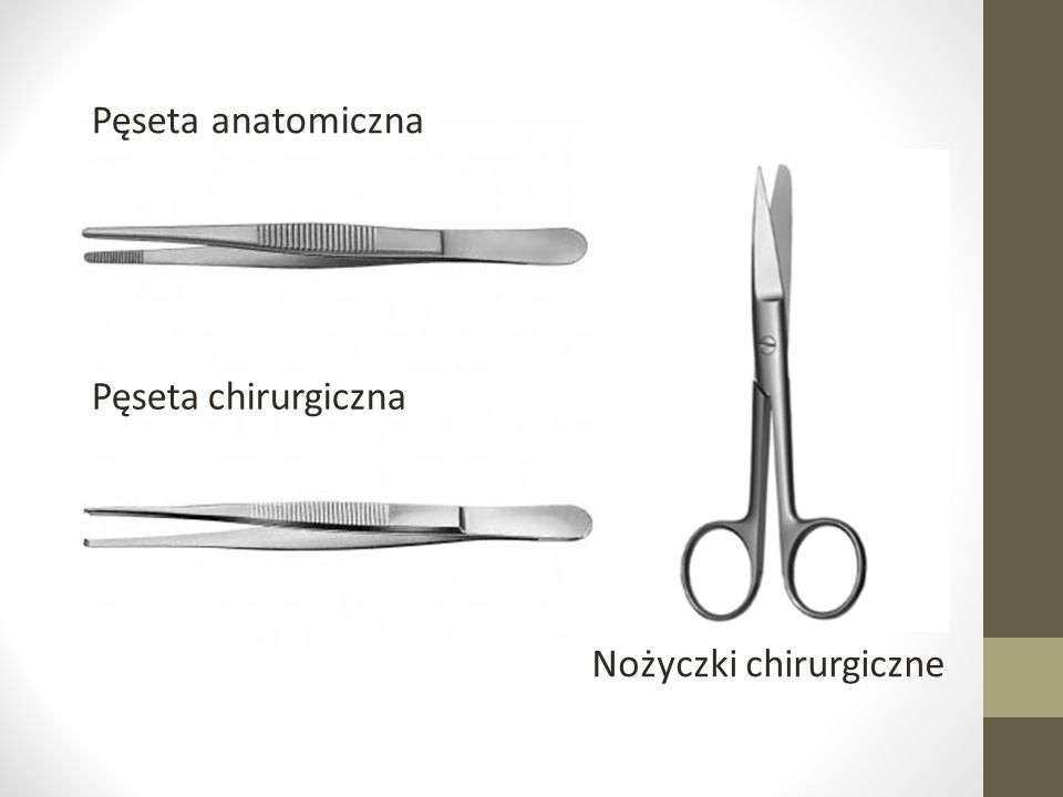 Pęseta anatomiczna Pęseta chirurgiczna Nożyczki chirurgiczne