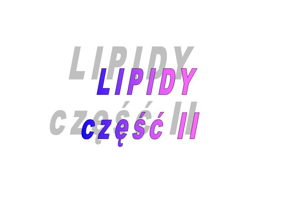 LIPIDY część II