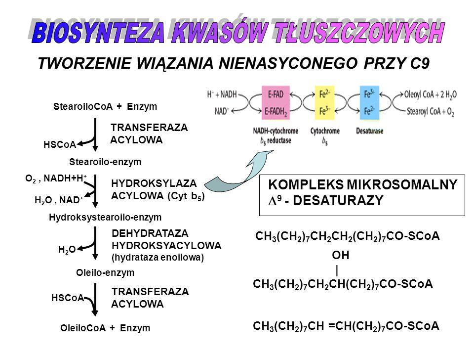 BIOSYNTEZA KWASÓW TŁUSZCZOWYCH Hydroksystearoilo-enzym