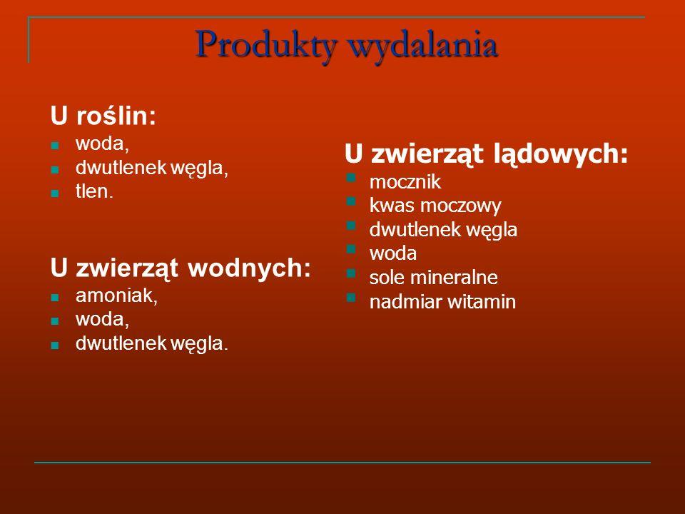 Produkty wydalania U roślin: U zwierząt lądowych: U zwierząt wodnych: