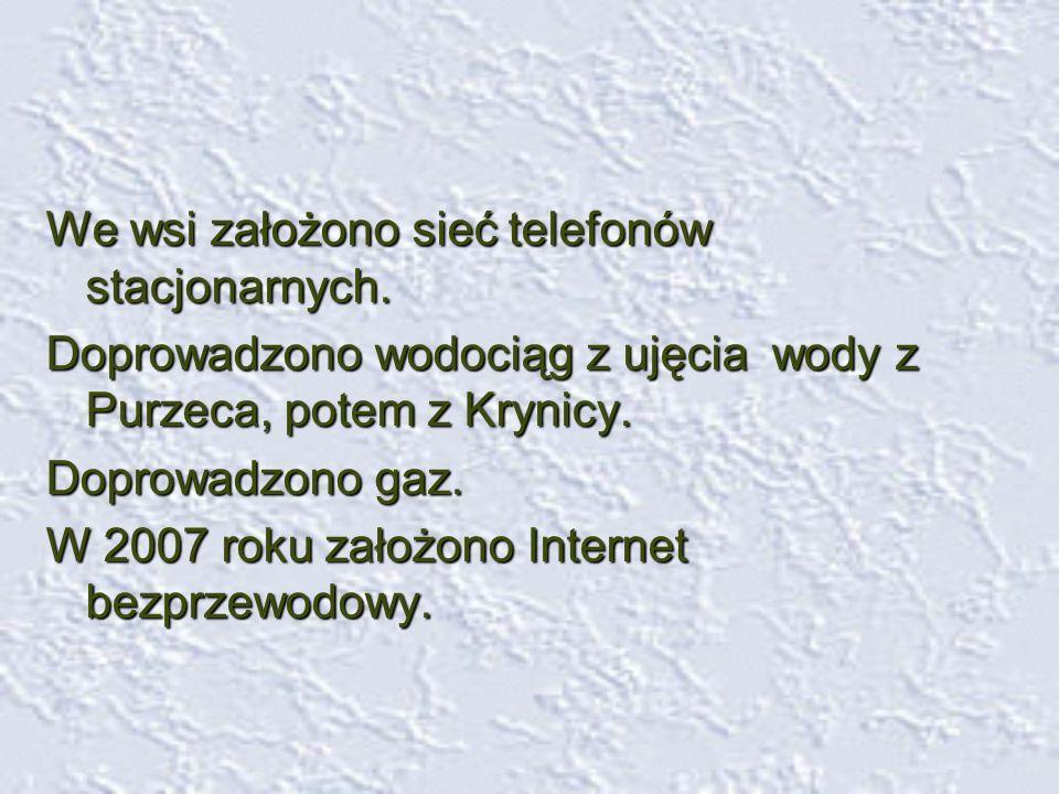We wsi założono sieć telefonów stacjonarnych.