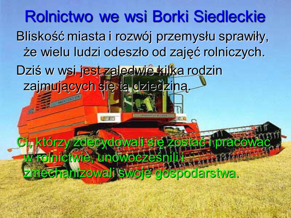 Rolnictwo we wsi Borki Siedleckie