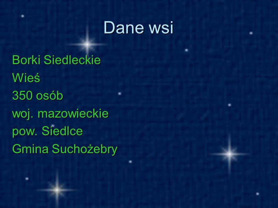 Dane wsi Borki Siedleckie Wieś 350 osób woj. mazowieckie pow. Siedlce