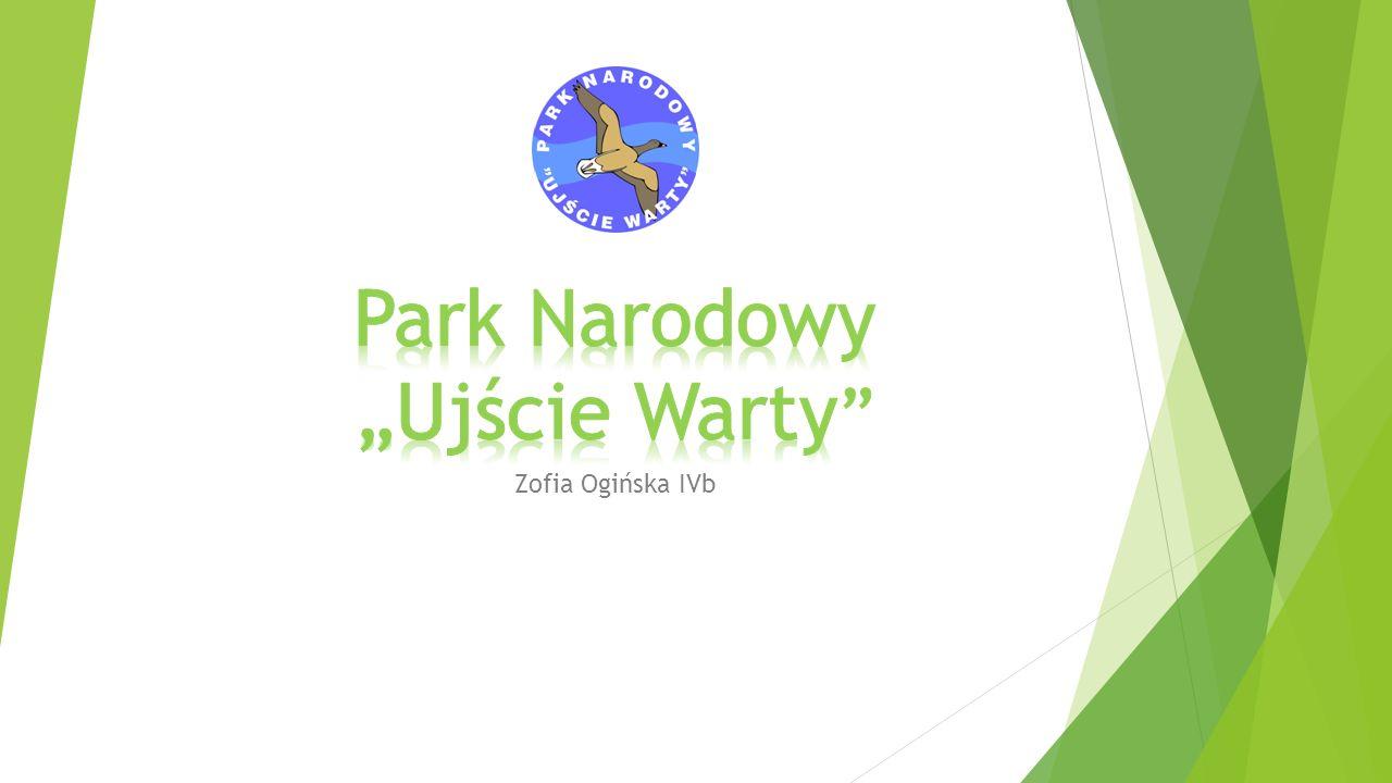 """Park Narodowy """"Ujście Warty"""