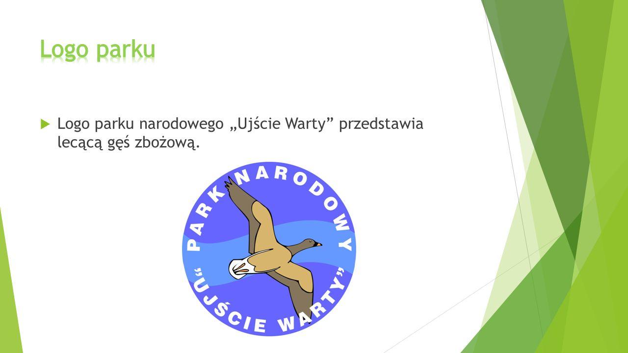 """Logo parku Logo parku narodowego """"Ujście Warty przedstawia lecącą gęś zbożową."""