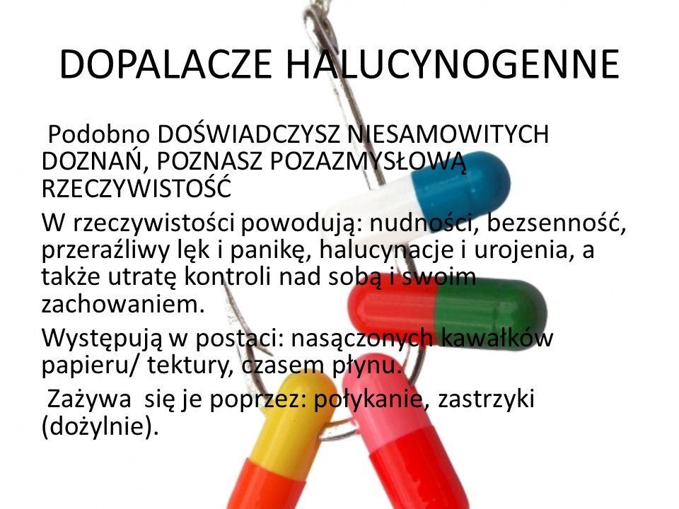 DOPALACZE HALUCYNOGENNE