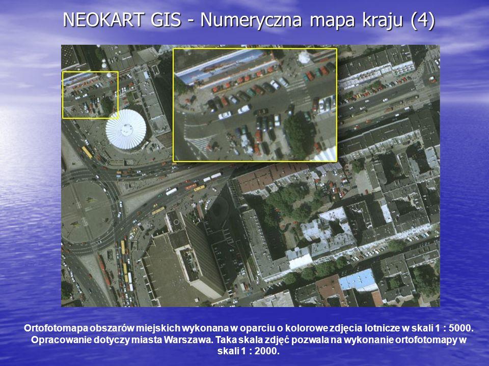 NEOKART GIS - Numeryczna mapa kraju (4)