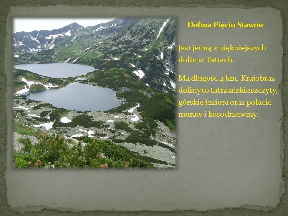 Dolina Pięciu Stawów Jest jedną z piękniejszych dolin w Tatrach.