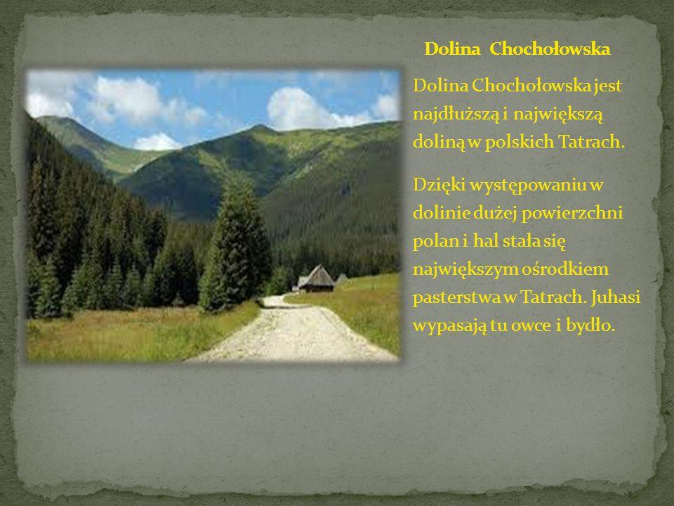 Dolina Chochołowska Dolina Chochołowska jest najdłuższą i największą doliną w polskich Tatrach.