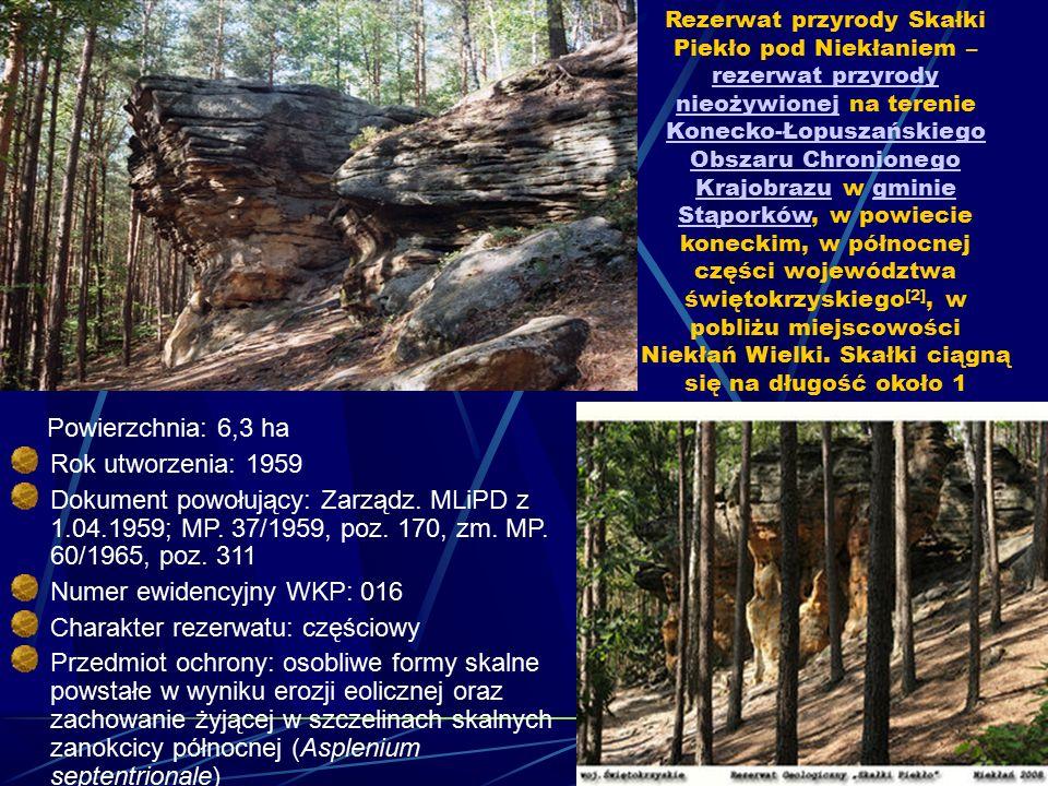 Numer ewidencyjny WKP: 016 Charakter rezerwatu: częściowy