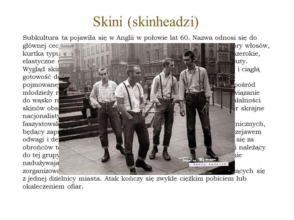 Skini (skinheadzi)