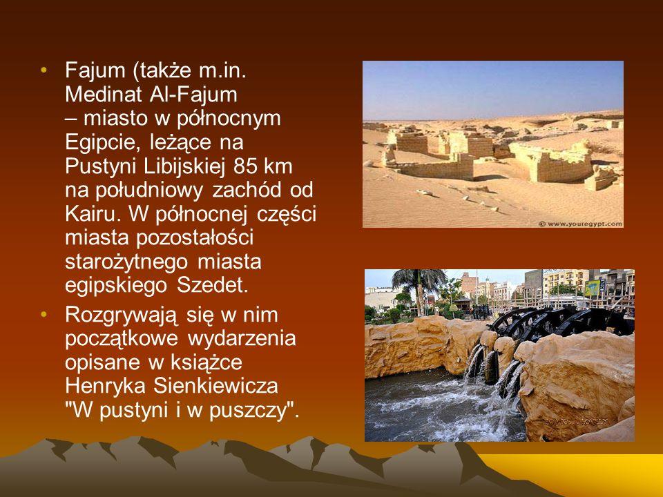 Fajum (także m.in. Medinat Al-Fajum – miasto w północnym Egipcie, leżące na Pustyni Libijskiej 85 km na południowy zachód od Kairu. W północnej części miasta pozostałości starożytnego miasta egipskiego Szedet.