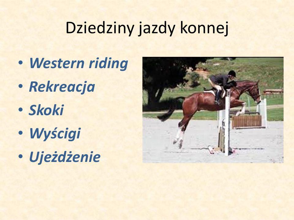 Dziedziny jazdy konnej