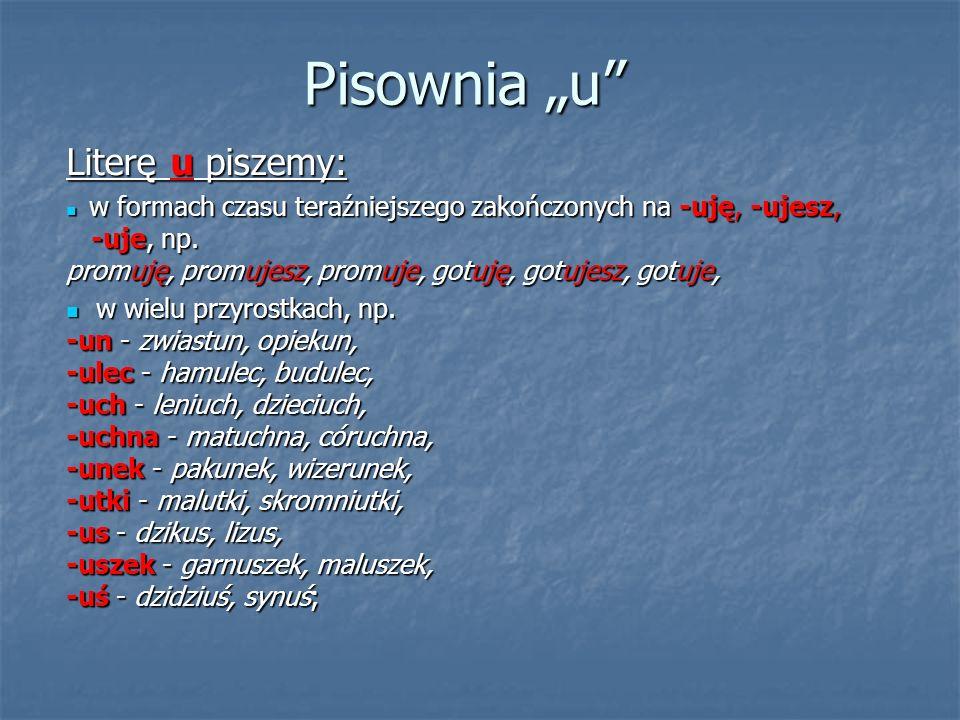 """Pisownia """"u Literę u piszemy:"""