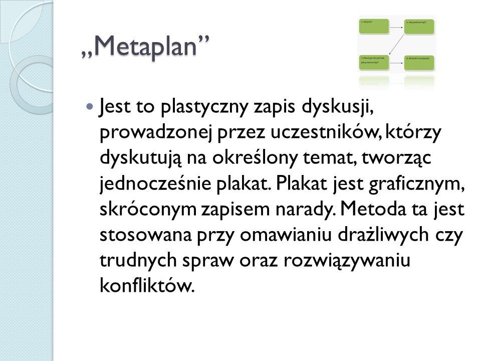"""""""Metaplan"""